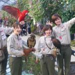 神戸どうぶつ王国に行くなら出来る限り安く!! 割引きやクーポン情報を紹介します