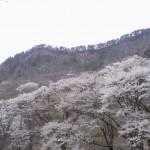 大阪駅や奈良駅から、屏風岩公苑へのアクセス(行き方) おすすめの行き方を紹介します
