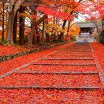 京都駅から、毘沙門堂へのアクセス(行き方) おすすめの行き方を紹介します