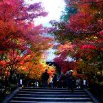 京都駅から、永観堂へのアクセス(行き方) おすすめの行き方を紹介します