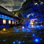 京都駅から、青蓮院へのアクセス(行き方) おすすめの行き方を紹介します