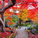 京都駅から、宝厳院へのアクセス(行き方) おすすめの行き方を紹介します