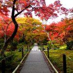 京都駅から、宝筐院へのアクセス(行き方) おすすめの行き方を紹介します