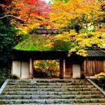京都駅から、法然院へのアクセス(行き方) おすすめの行き方を紹介します