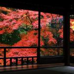 京都駅から、瑠璃光院へのアクセス(行き方) おすすめの行き方を紹介します
