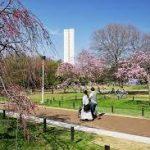 大阪駅から、大仙公園へのアクセス おすすめの行き方を紹介します