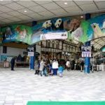 名古屋駅から、南紀白浜アドベンチャーワールドへのアクセス 電車やバス等 おすすめの行き方を紹介します