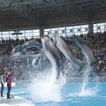 アドベンチャーワールド通が教える! 関西で動物園・水族館両方楽しんじゃおう お勧めスポット