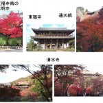 東福寺から清水寺へのアクセス(行き方)