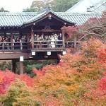 大阪駅から、東福寺へのアクセス おすすめの行き方を紹介します