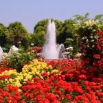 大阪駅や新神戸駅方面から神戸市立 須磨離宮公園へのアクセス(行き方)