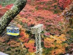 千本口ケーブルからの景色 紅葉