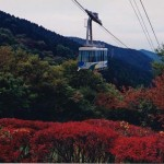 大阪駅から金剛山へのアクセス(行き方) 絶景の紅葉をゴンドラから見下ろす