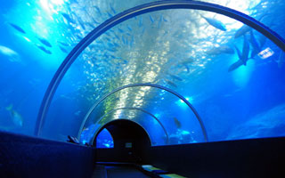 串本海中公園水族館