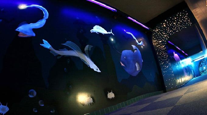 須磨海浜水族園 エントランスホール