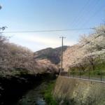 大阪駅から、山中渓の桜やわんぱく公園へのアクセス(行き方) おすすめの行き方を紹介します。