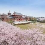 大阪駅から金剛寺へのアクセス おすすめの行き方を紹介します