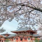 金剛寺周辺のホテルについて アクセスに便利な、おすすめのホテルを紹介します
