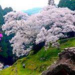 奈良駅から、佛隆寺へのアクセス おすすめの行き方を紹介します
