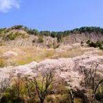 大阪駅から、屏風岩公苑へのアクセス おすすめの行き方を紹介します