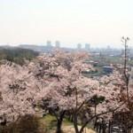 京都駅から、摂津峡公園へのアクセス おすすめの行き方を紹介します