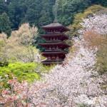 大阪駅や奈良駅から、長谷寺へのアクセス(行き方) おすすめの行き方を紹介します