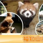 京都駅から、三段池公園の福知山市動物園へのアクセス おすすめの行き方を紹介します
