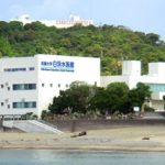 白浜駅から、京都大学白浜水族館へのアクセス おすすめの行き方を紹介します
