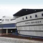 三ノ宮駅から、京都水族館へのアクセス おすすめの行き方を紹介します