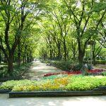 大阪駅から、靱公園へのアクセス(行き方) おすすめの行き方を紹介します