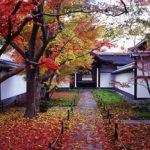 京都駅から、黄梅院へのアクセス おすすめの行き方を紹介します