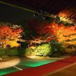 京都駅から、圓徳院へのアクセス おすすめの行き方を紹介します。
