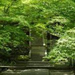 常寂光寺や宝厳院・比叡山延暦寺の関連記事を紹介します。