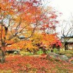 京都駅から、宝厳院へのアクセス おすすめの行き方を紹介します