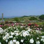 白浜駅から、平草原公園へのアクセス おすすめの行き方を紹介します