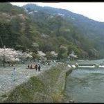 大阪駅から、嵐山公園へのアクセス おすすめの行き方を紹介します