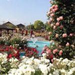 大阪駅から、若園公園へのアクセス おすすめの行き方を紹介します