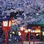 平野神社から、京都駅へのアクセス おすすめの行き方を紹介します