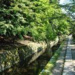 哲学の道から、京都駅へのアクセス おすすめの行き方を紹介します