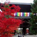 真如堂から、金戒光明寺へのアクセス おすすめの行き方を紹介します