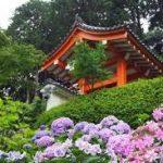 宇治上神社から、三室戸寺へのアクセス おすすめの行き方を紹介します