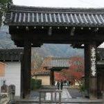 竹林の道から、天龍寺へのアクセス おすすめの行き方を紹介します