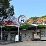 三ノ宮駅から、神戸市立王子動物園へのアクセス おすすめの行き方を紹介します
