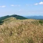 生石高原へのアクセス おすすめの行き方を紹介します