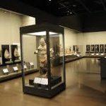 和歌山駅から、和歌山県立博物館へのアクセス おすすめの行き方を紹介します