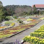岩出駅から、植物公園緑花センターへのアクセス おすすめの行き方を紹介します