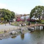大阪駅から、高槻城跡公園へのアクセス おすすめの行き方を紹介します