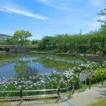 大阪駅から、白鷲公園へのアクセス おすすめの行き方を紹介します
