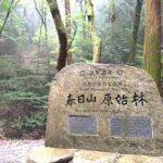奈良駅から、春日山原始林へのアクセス おすすめの行き方を紹介します