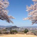 奈良駅から、甘樫丘展望台へのアクセス おすすめの行き方を紹介します